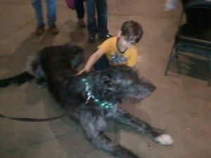 Moony The Irish Wolfhound at Hoffman Estates Celtic Fest.