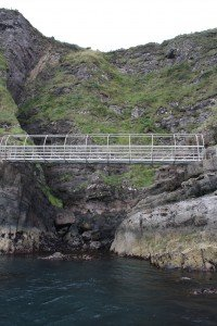 The Gobbins in Northern Ireland (courtesy photo)
