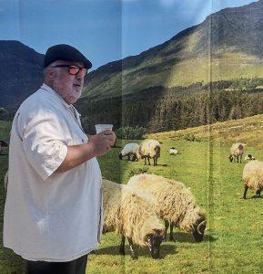 Tom and sheep